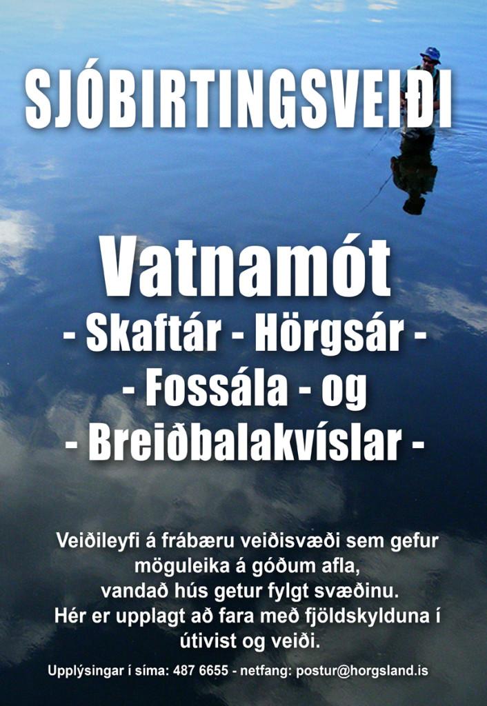 plakat_1_vefur